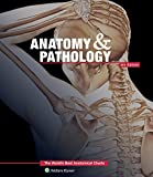 Anatomy & Pathology:The World's Best Anatomical Charts Book (The World's Best Anatomical Chart Series)