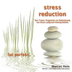 Sei perfekt (stress reduction 2) Hörbuch