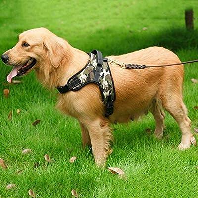 FONLAM Arnés para Perro Cachorro Pechera Chaleco Arnés de ...