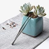 8Pcs Bonsai Tree Kit Succulent Tools Garden Tool