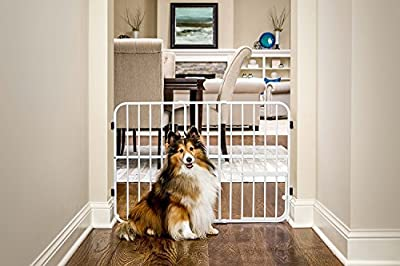Carlson Metal Expandable Pet Gate, 26-42 inches wide, Pressure Mount
