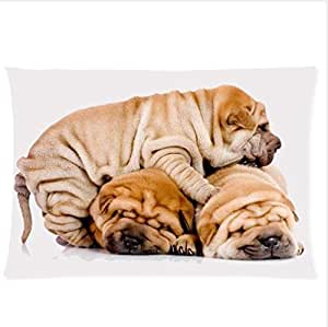 Animals Dogs Three Shar Pei Dogs Are Sleeping On Each Other Design,Shar Pei Dog Pillowcase,Twin Sides Pillowcase Pillow Cover 20x30 inches by icecream design