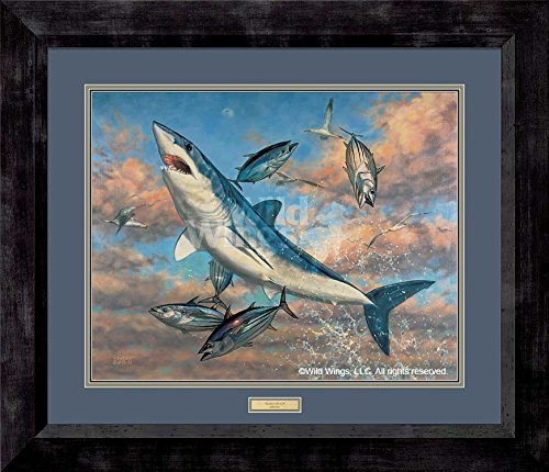 Amazoncom Mako Moon Shark Framed Limited Edition Print By Don