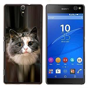 LECELL--Funda protectora / Cubierta / Piel For Sony Xperia C5 Ultra -- Lindo gato felino mascota peluda gris de pelo largo --