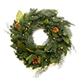 CREIDEA GKI/Bethlehem Lighting Green River Spruce Battery Operated LED Wreath, 24-Inch