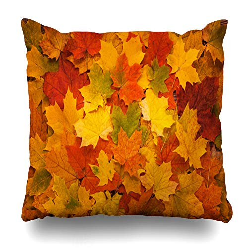 Kutita Decorativepillows Covers 20 x 20 inch Throw Pillow Covers,Brown Fall Colored Autumn Leaves Foliage Orange Pattern Double-Sided Decorative Home Decor Pillowcase Sofa Bedroom Car