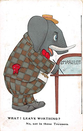 Dressed Elephant Sending Telegram Antique Postcard J19343 ()
