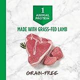 Instinct Limited Ingredient Diet Grain Free