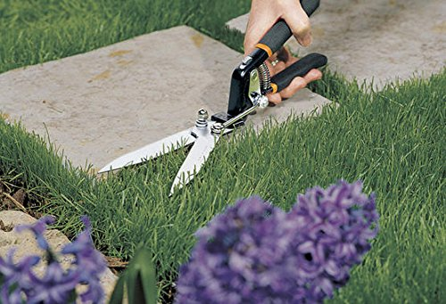 The 8 best grass shears clippers