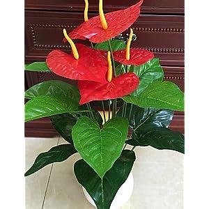 HUAHUA Artificial Flowers, Fashion Bouquets,Set of 1 Noble 18 Head Anthurium Five Red Flowers Cloth Flowers (1PCS) 44