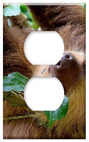 Switch Plate Outlet Cover - Sloth Costa Rica Puerto Viejo Rainforest Travel (Viejas Outlets)