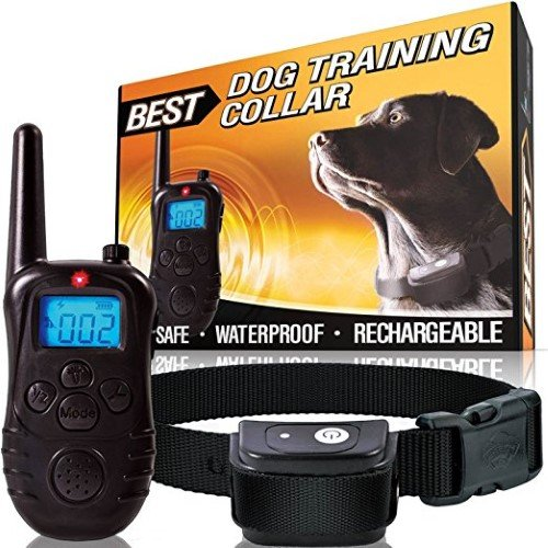 (Best Low Voltage Weatherproof Pet Training Collar with Remote, LCD Display and 3 Correctional Settings, 1000-Feet Range)