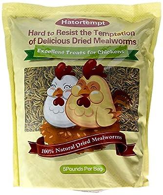 Hatortempt 5 lbs Dried Mealworms for Wild Bird Chicken Fish