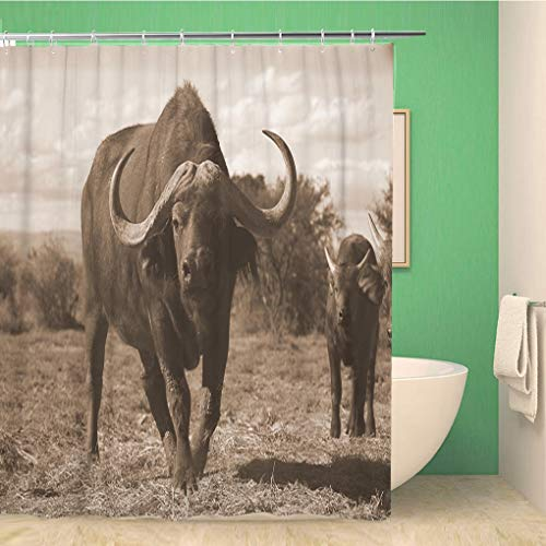 Awowee Bathroom Shower Curtain African Monochrome Portrait of Cape Buffalo Head and Horn Calf Polyester Fabric 72x78 inches Waterproof Bath Curtain Set with Hooks