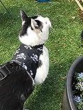 Mynwood Cat Jacket/Harness Skulls Adult Cat - Escape Proof