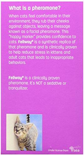 Buy feliway diffuser online dating 7