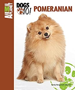 dogs 101 pomeranian pomeranian animal planet dogs 101 ebook sandy bergstrom 3589