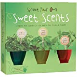 Sprout Your Own Sweet Scents