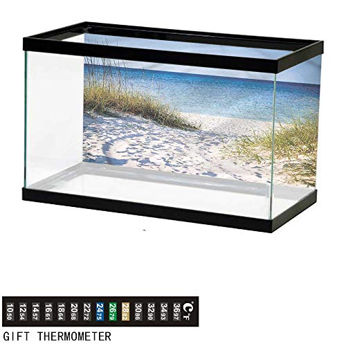 bybyhome Fish Tank Backdrop Beach,Clear Sky at Gulf of Mexico,Aquarium Background,24
