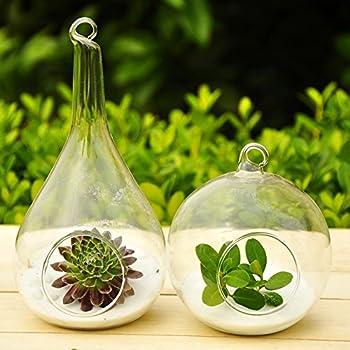 Mkono 2 Pack Glass Hanging Planter Plant Terrarium, Globe and Teardrop