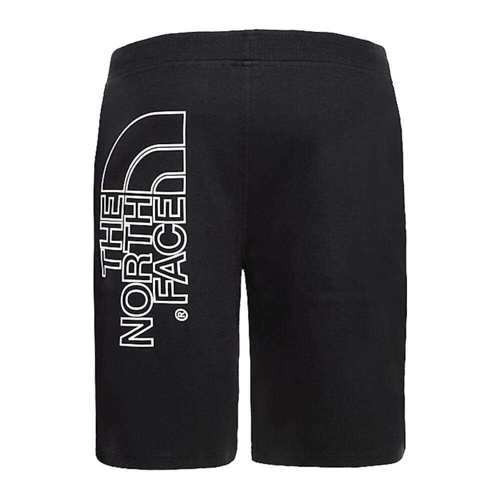 THE NORTH FACE Mens Graphic Light Shorts