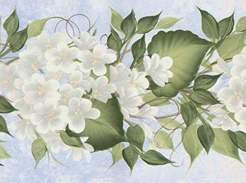 Donna Dewberry Flowering Vine Wallpaper Border 92955fp