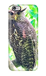 TYH - 8616186K78282744 Dshoujuan Premium Protection Spot-bellied Eagle Owl Case Cover For Iphone 6 plus 5.5- Retail Packaging phone case
