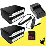 Two Halcyon 7200 mAH Lithium Ion Replacement Battery and Charger Kit + 32GB SDHC Class 10 Memory Card for Sony Professional DSR-PD170 3 CCD MiniDV Camcorder with 12x Optical Zoom and Sony NP-F970