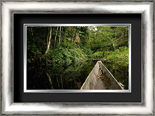Dugout Canoe in Blackwater Stream, Yasuni National Park, Amazonia, Ecuador 24x17 Silver Contemporary Wood Framed and Double Matted (Black Over Silver) Art Print by Oxford, Pete (Best Wood For Dugout Canoe)
