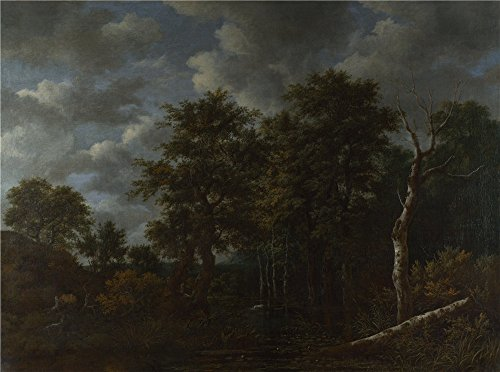 Attendant Display Console (Oil Painting 'Jacob Van Ruisdael A Pool Surrounded By Trees', 16 x 22 inch / 41 x 55 cm , on High Definition HD canvas prints is for Gifts And Home Theater, Kids Room And Study Room Decoration, decor)