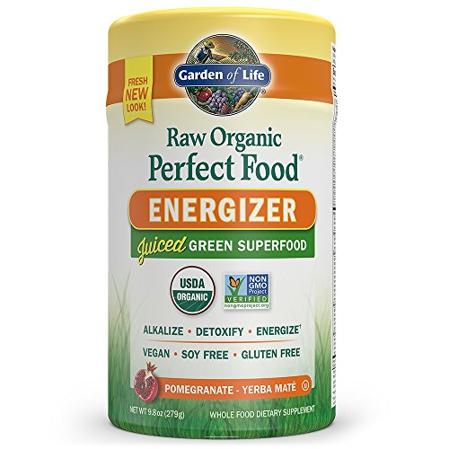 Garden of Life Vegan Green Superfood Powder - Raw Organic Perfect Whole Food Energizer Dietary Supplement, 9.8oz (279g) Powder