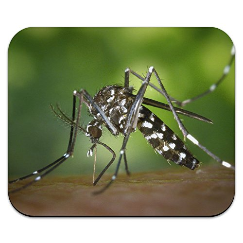 graphics-and-more-asian-tiger-mosquito-bug-mouse-pad-mousepad