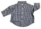 Polo Ralph Lauren Boys Gingham Cotton Poplin Button Down Shirt (3 Months, Navy and White)
