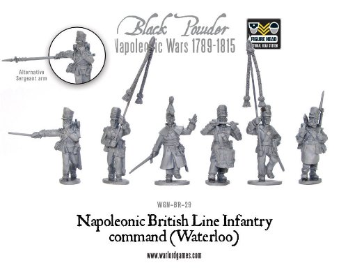 Napoleonic British Line Infantry Command Waterloo - British Line