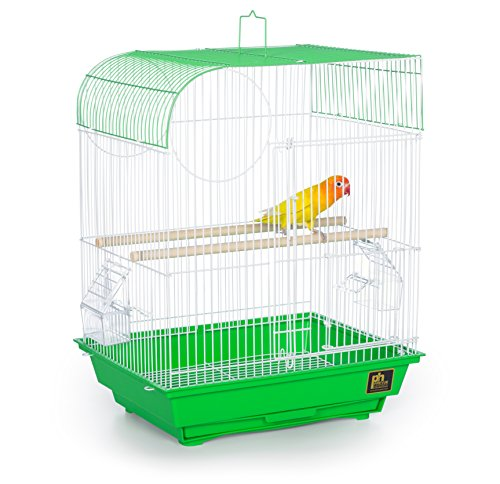 Prevue Pet Products South Beach Flat Top Bird Cage, Lime Green
