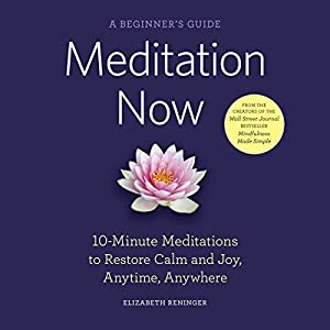 Meditation Now: A Beginner's Guide Audiobook