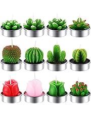 12 Piezas de Velas de Cactus Rosa Suculento Velas de Luz de Té de Cactus Delicadas Hechas a Mano para SPA Decoracion de Hogar Fiesta Boda Regalos (Estilo D)