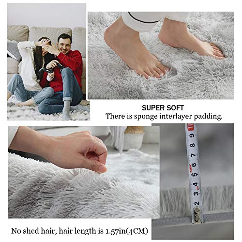 GOOVI Area Rugs Soft Fluffy Modern Home Decor Washable Non-Slip Carpet for Bedroom, Living Room, Boys Room, Girls Room, Play Room (4\'0 x 5\' 3\