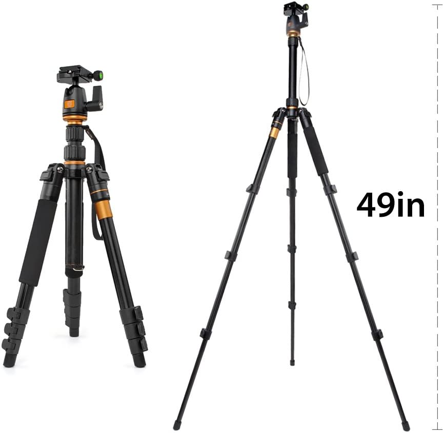 Professional Q555 Portable Travel Compact Monopod with Ball Head Adjustable Legs Magnesium Aluminium for Digital Canon Nikon Sony Olympus Pentax Stand Holder Flexzion DSLR Camera Tripod