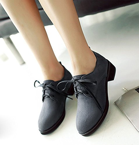 Lace New Gray Suede Low CHFSO Round Up Plus Toe Oxfords Women's Faux Shoes Solid Top Rxw65BX
