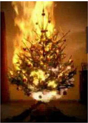 Christmas Tree On Fire.Amazon Com Diamondback Stop It Fire Retardant Spray And