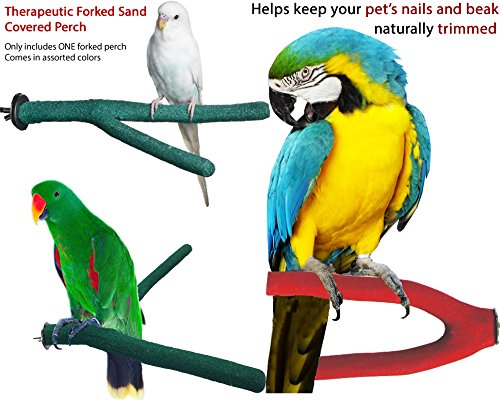 Therapeutic Sand Covered Forked Grooming and Pedicure Bird Perch (Medium)