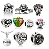 SEXY SPARKLES Mothers Day Bulk Charm Beads for Snake Chain Charm Bracelets Compatible with European Bracelets