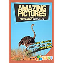 Amazing Pictures and Facts About Ostriches: The Most Amazing Fact Book for Kids About Ostriches