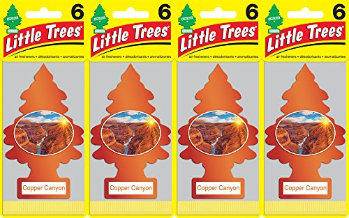 Little Trees Copper Canyon Air Freshener   Pack Of 24