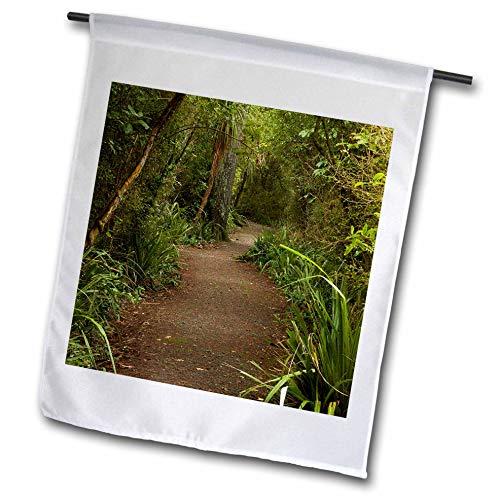 3dRose Danita Delimont - New Zealand - Forest Path, Thompsons Bush, Invercargill, South Island, New Zealand - 18 x 27 inch Garden Flag (fl_312950_2) (Best Hiking Trails In New Zealand South Island)