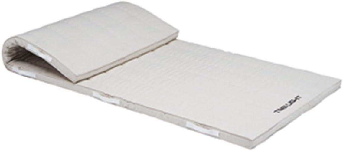 TOEI LIGHT(トーエイライト) 合成スポンジマット6㎝厚 9号帆布 90×180×6㎝ T1913 安全に配慮した側面ベルト式 柔軟性が高く跳び箱からの着地や回転運動のショックを効果的に吸収