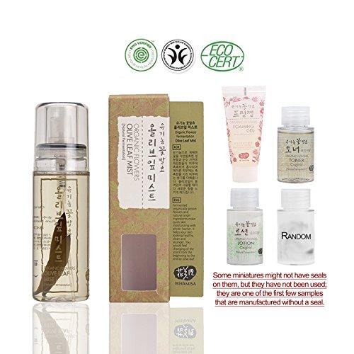 Cheap Whamisa [ Skin Care Kit ] Organic Flowers Olive Leaf Mist 80ml / Original Toner 20ml / Original Lotion 20ml / Sebum Treatment 20ml / Foaming Gel 20ml – Naturally fermented, EWG Verified