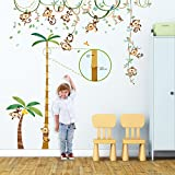 Decowall DA-1507P1607 Monkey on Vine and Height Chart Kids Wall Decals Wall Stickers Peel and Stick Removable Wall Stickers for Kids Nursery Bedroom Living Room