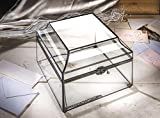 Glass Display Box Large Clear Case Decorative
